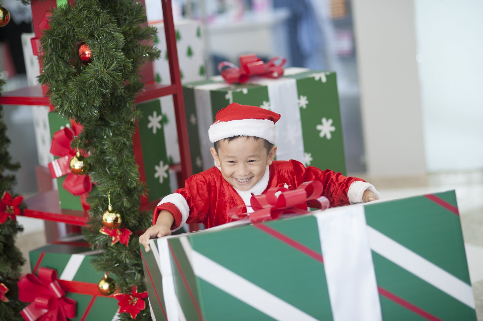 73 - Ảnh chụp bé Jindo 4 tuổi - KDL Bình quới 3 Tp.HCM