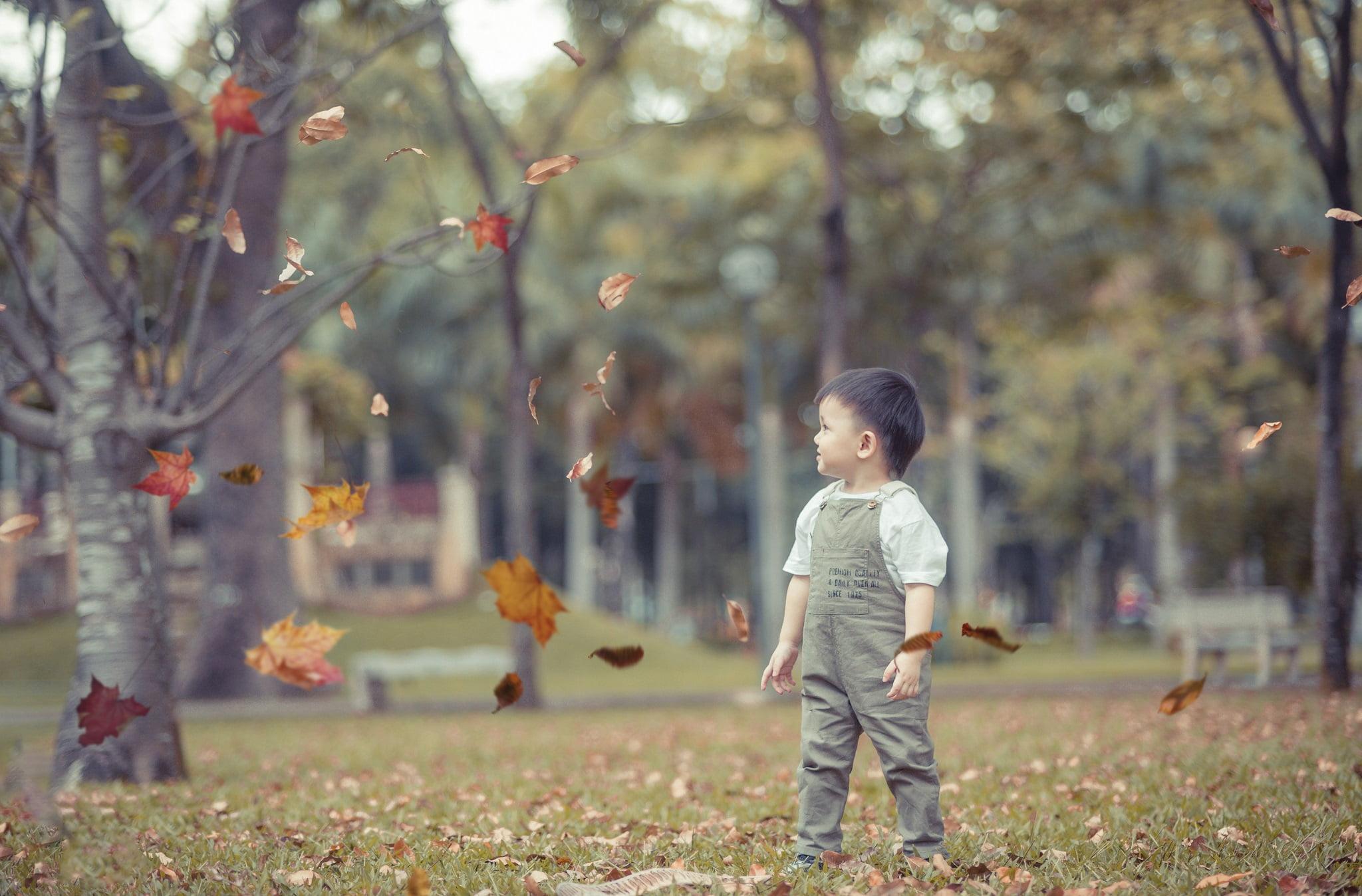 Judo 10 - Công viên Gia Định, địa điểm lý tưởng để chụp hình cho em bé