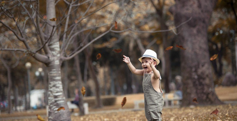 Công viên Gia Định, địa điểm lý tưởng để chụp hình cho em bé