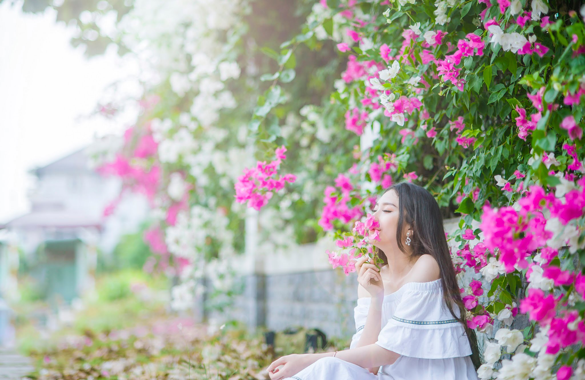 anh chup hoa giay 12 - Ảnh chụp với hoa giấy quận 2 - Huỳnh Như