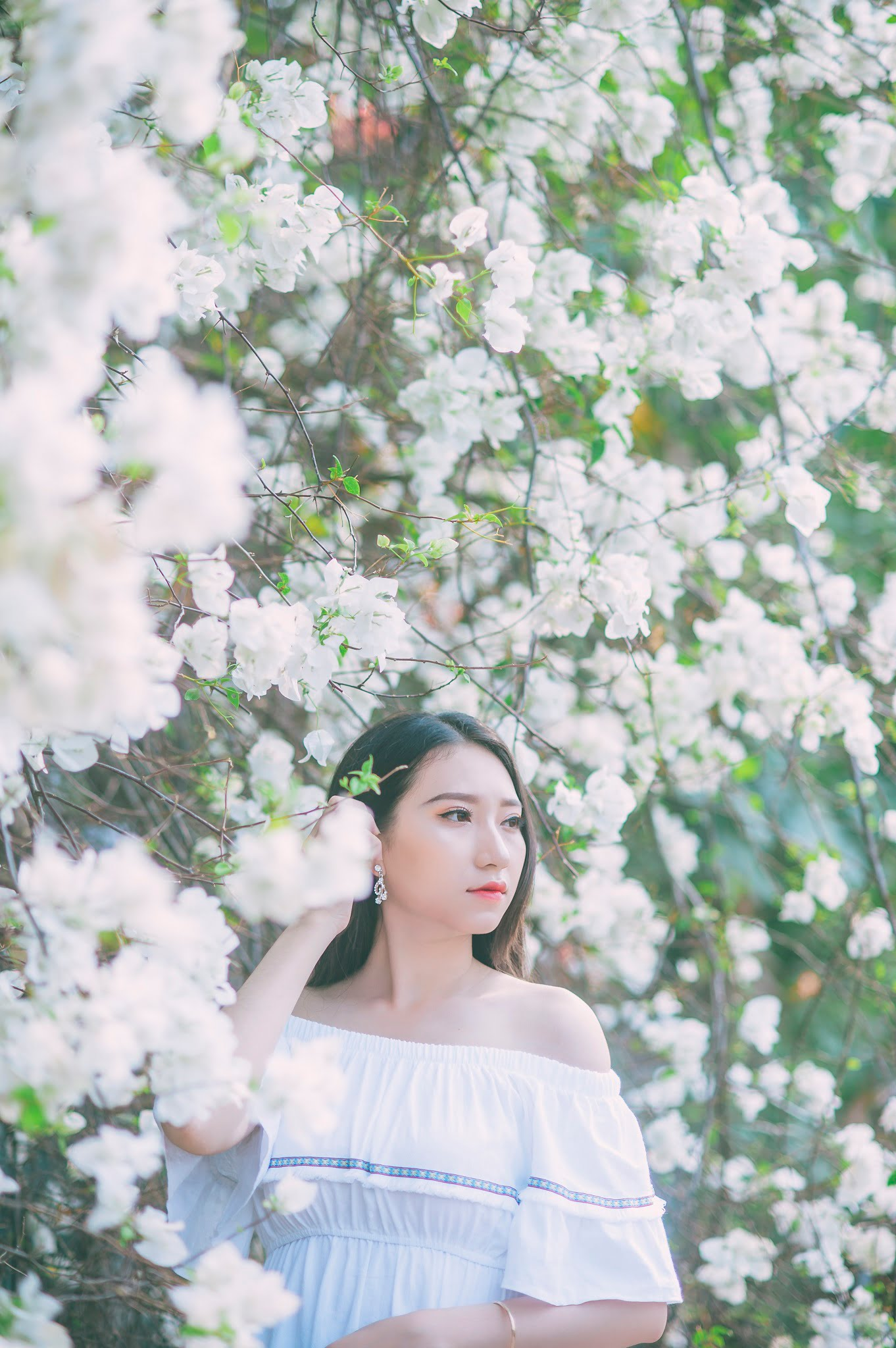 anh chup hoa giay 3 - Ảnh chụp với hoa giấy quận 2 - Huỳnh Như