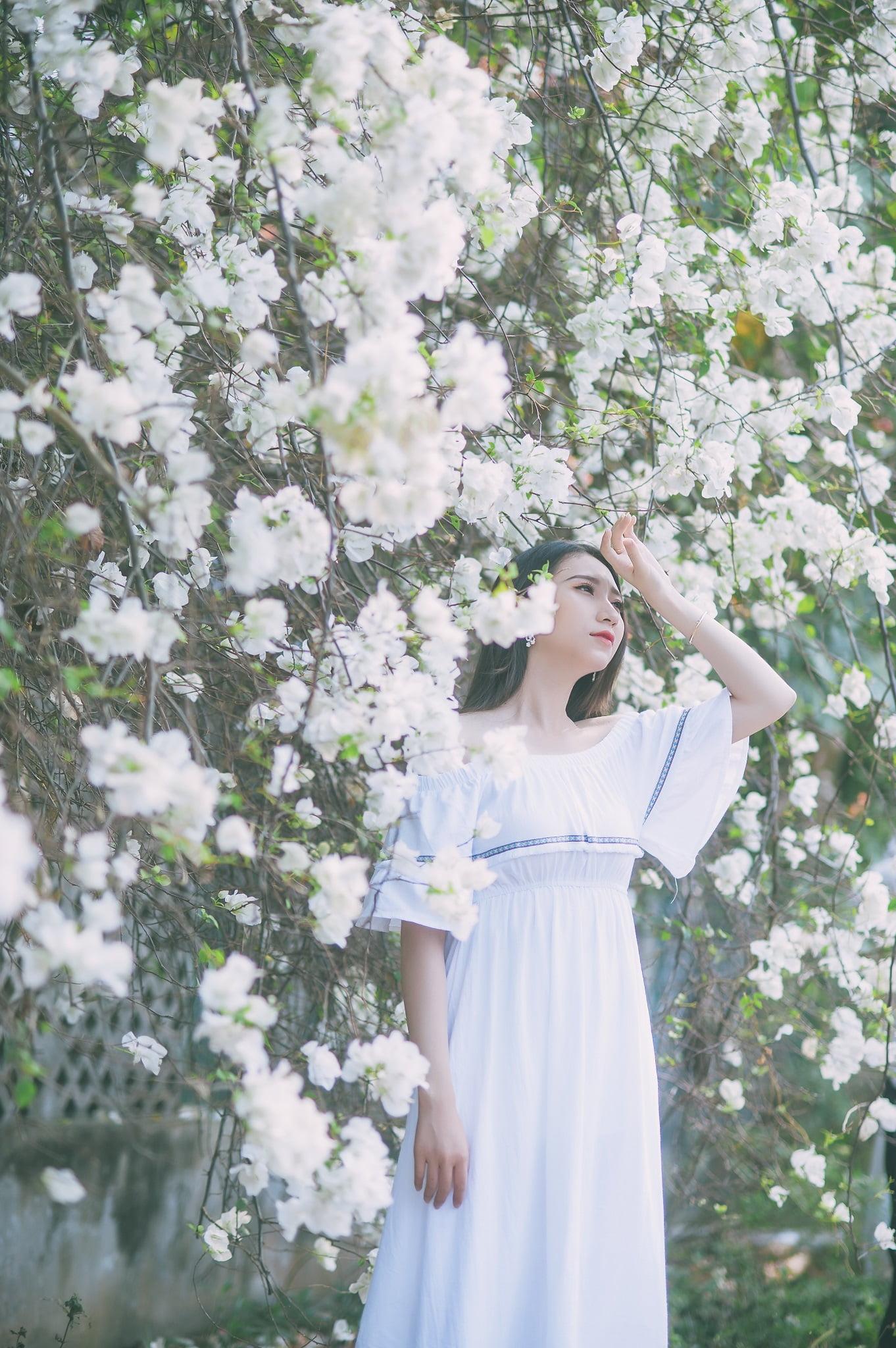 anh chup hoa giay 4 - Ảnh chụp với hoa giấy quận 2 - Huỳnh Như