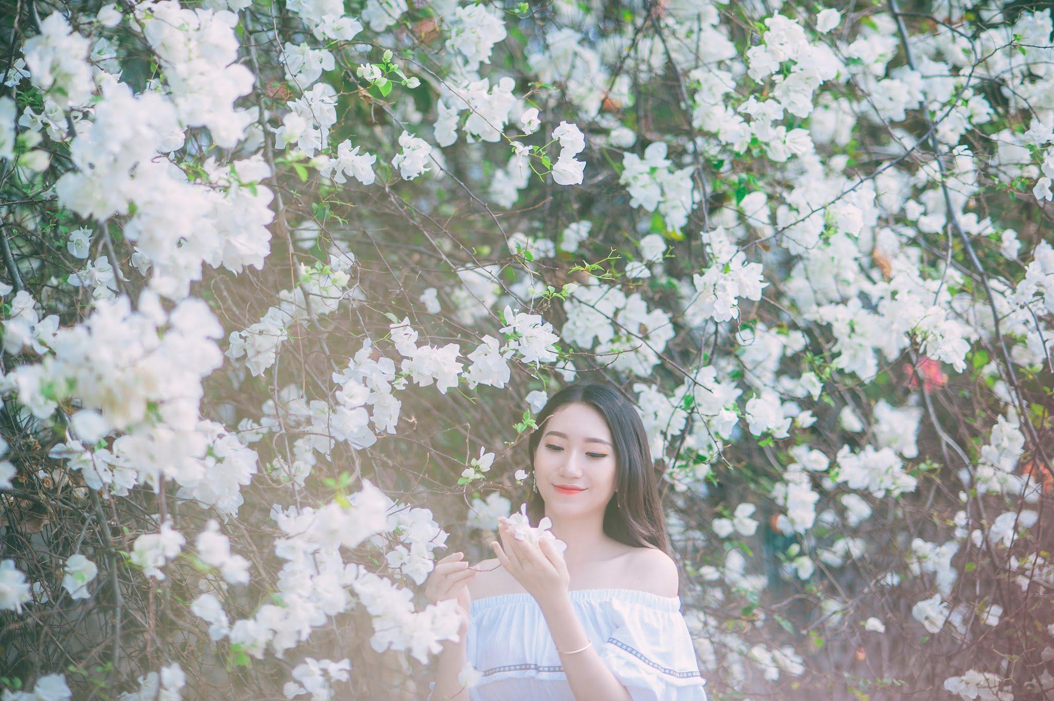 anh chup hoa giay 5 - Ảnh chụp với hoa giấy quận 2 - Huỳnh Như