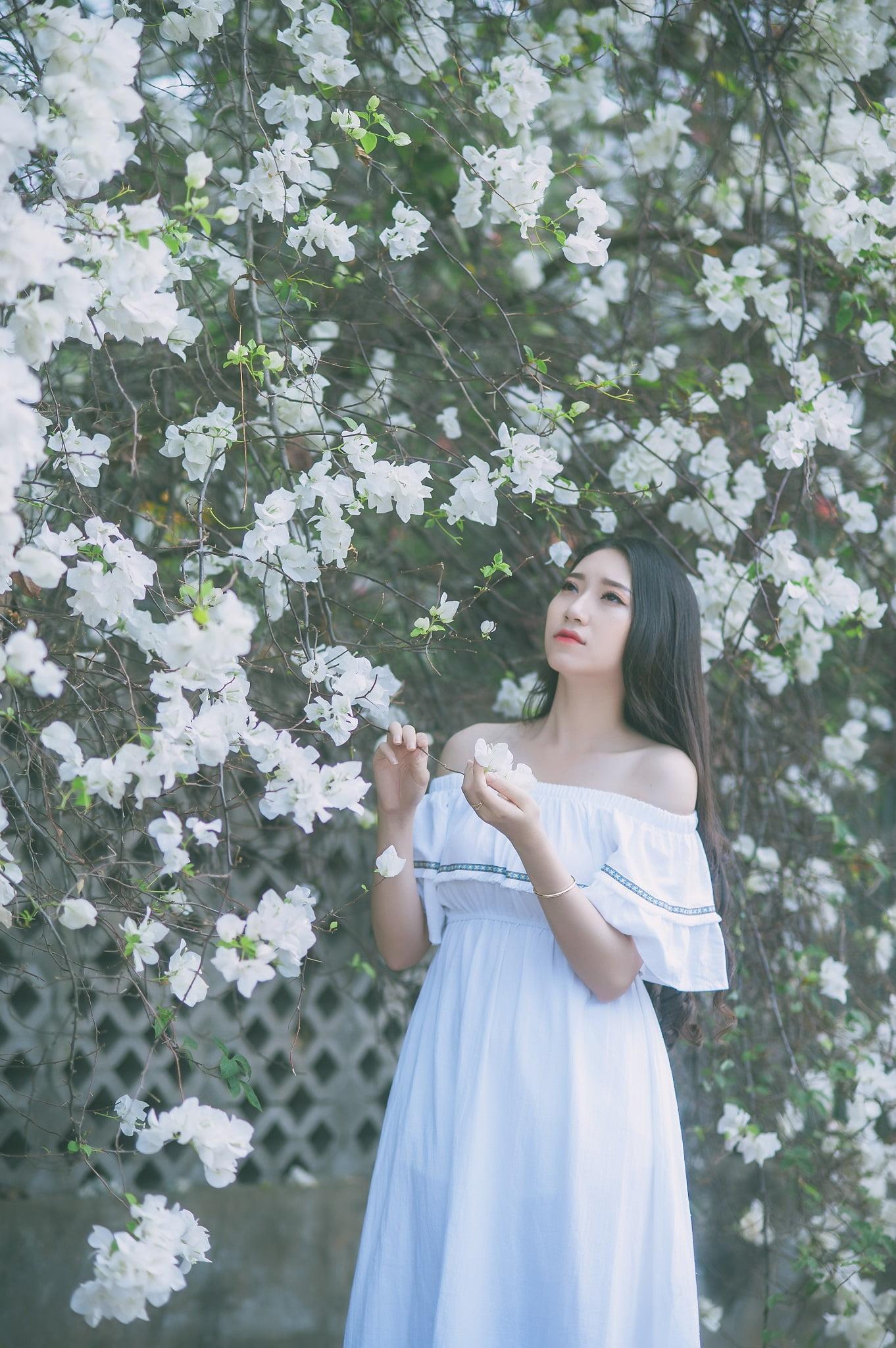 anh chup hoa giay 6 - Ảnh chụp với hoa giấy quận 2 - Huỳnh Như