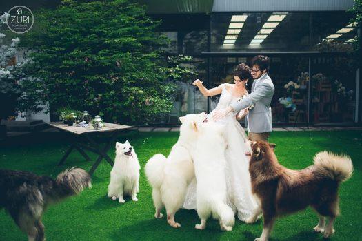 anh cuoi phim truong 9 525x350 - Top 4 phong cách chụp ảnh cưới hot nhất hiện nay
