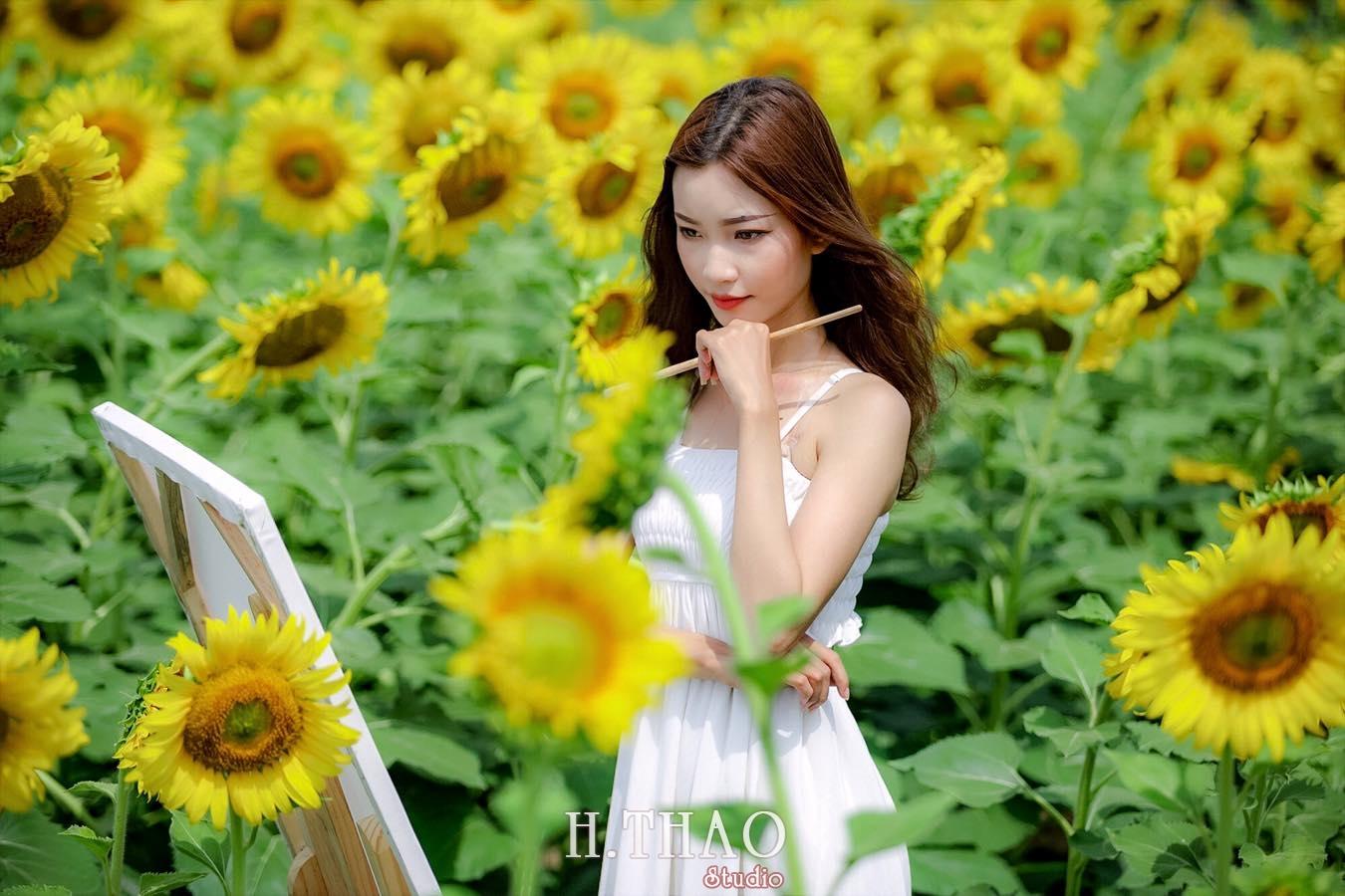 hoa huong duong 3 - Cánh đồng hoa hướng dương tuyệt đẹp giữa Sài Gòn