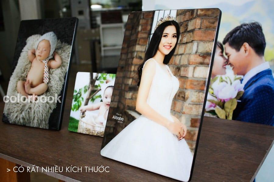 anhphaletreotuong02 min - Studio chụp hình gia đình đẹp, chuyên nghiệp ở Tp.HCM