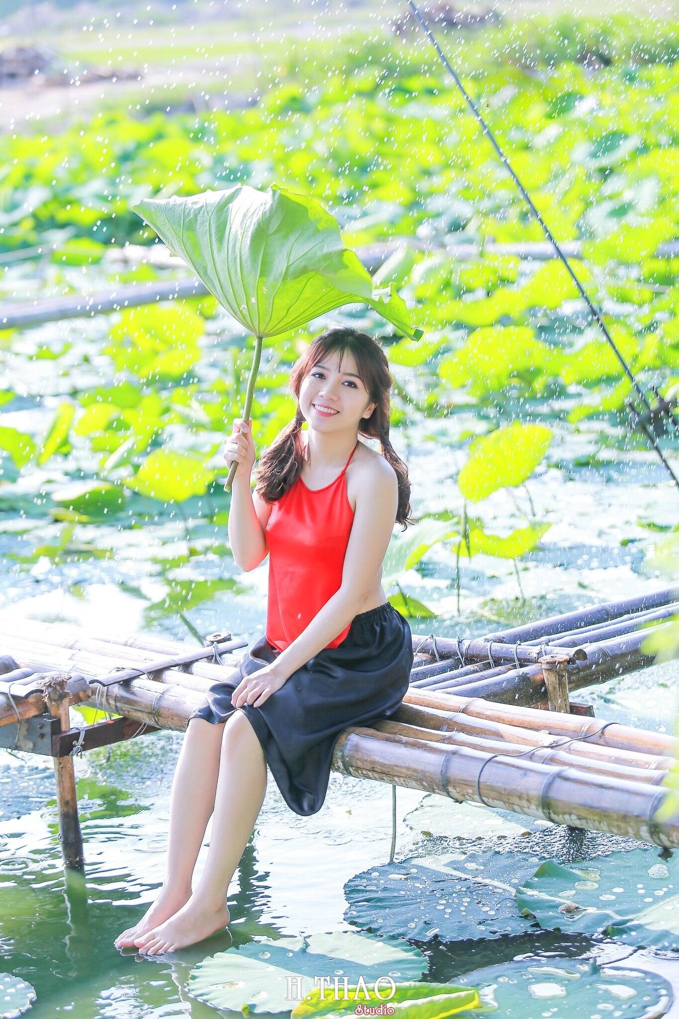 Hoa sen 13 - Tháng 6, chụp hình với hoa sen tại Tam đa quận 9 – Tp.HCM