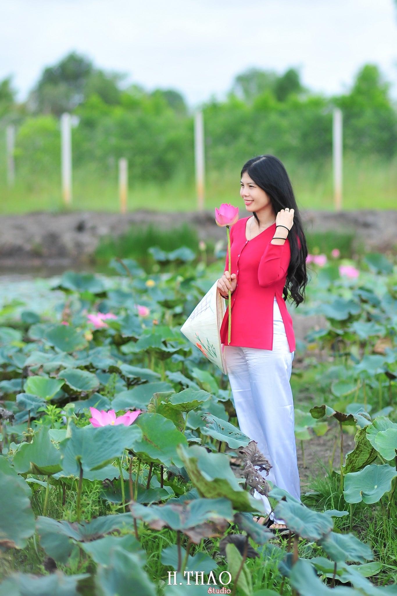 Hoa sen 4 - Tháng 6, chụp hình với hoa sen tại Tam đa quận 9 – Tp.HCM